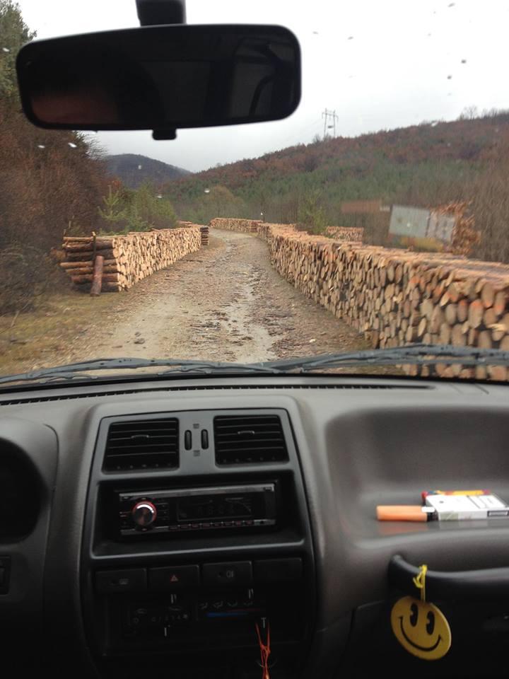 Горна Малина ще протестира срещу безогледната сеч на гората