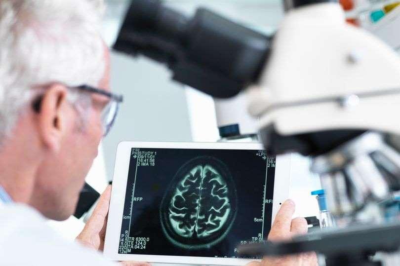 До една година ще има ефикасно лекарство срещу всички видове рак