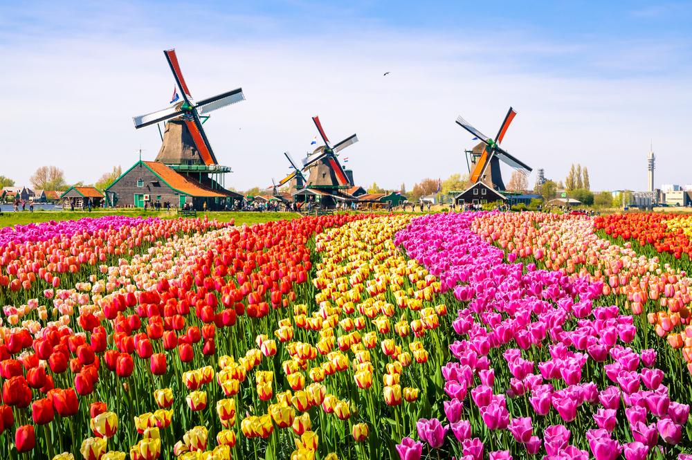 Холандия спира туристическата реклама, за да ограничи прекомерния туризъм
