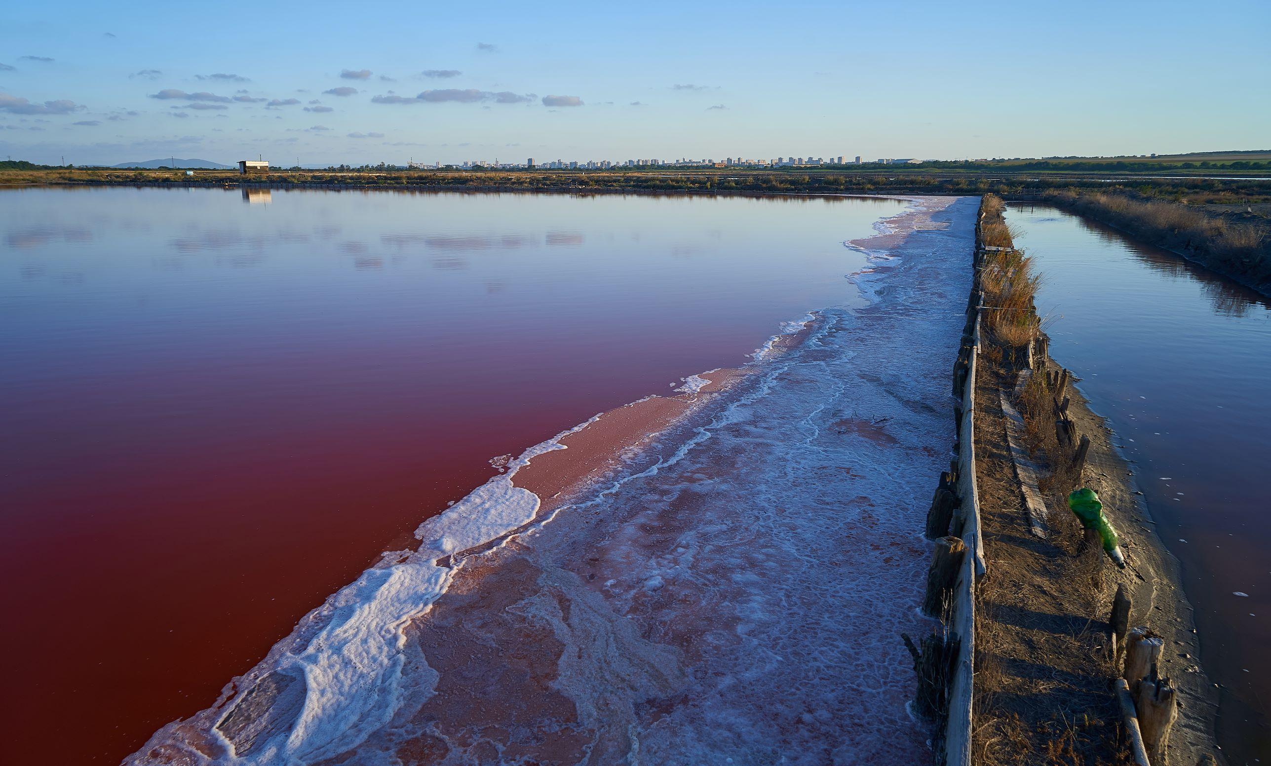 Влакче на солта ще разхожда посетителите по случай рождения ден на резервата Атанасовско езеро