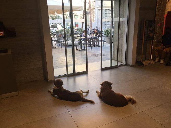На Крит всичко е спокойно