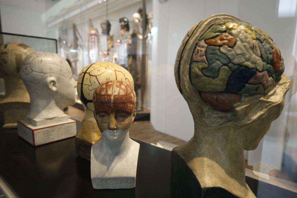 Музеят на човека отвори отново врати в Париж