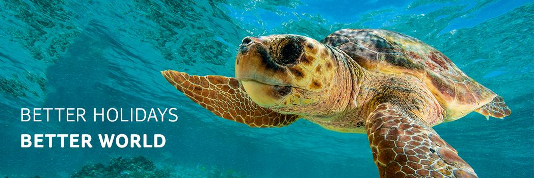 TUI предприема действия в защита на костенурките