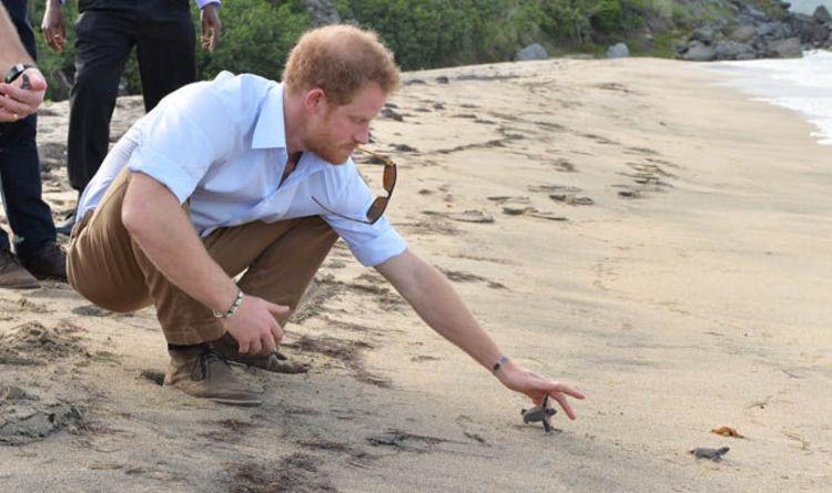 Карибски остров очаква бум на резервации заради кралски меден месец