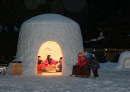 Зимните фестивали на Япония